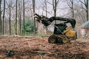 Chesapeake Tree Services Ground Cleanup