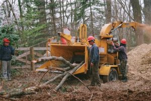 Chesapeake Tree Services Workers Using a Wood Chipper