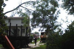 Tree Limb Being Lowered by Crane