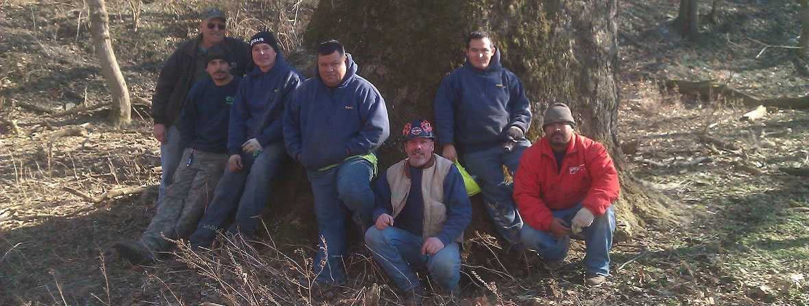 Group of People Sitting in Front of a Tree