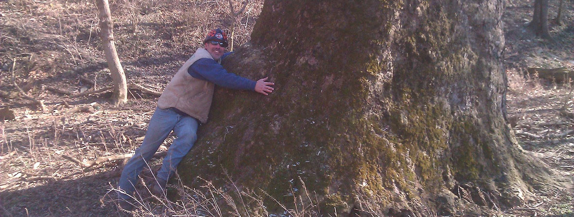Man Hugging a Large Tree